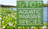 article/aquatic-invasive-species-0